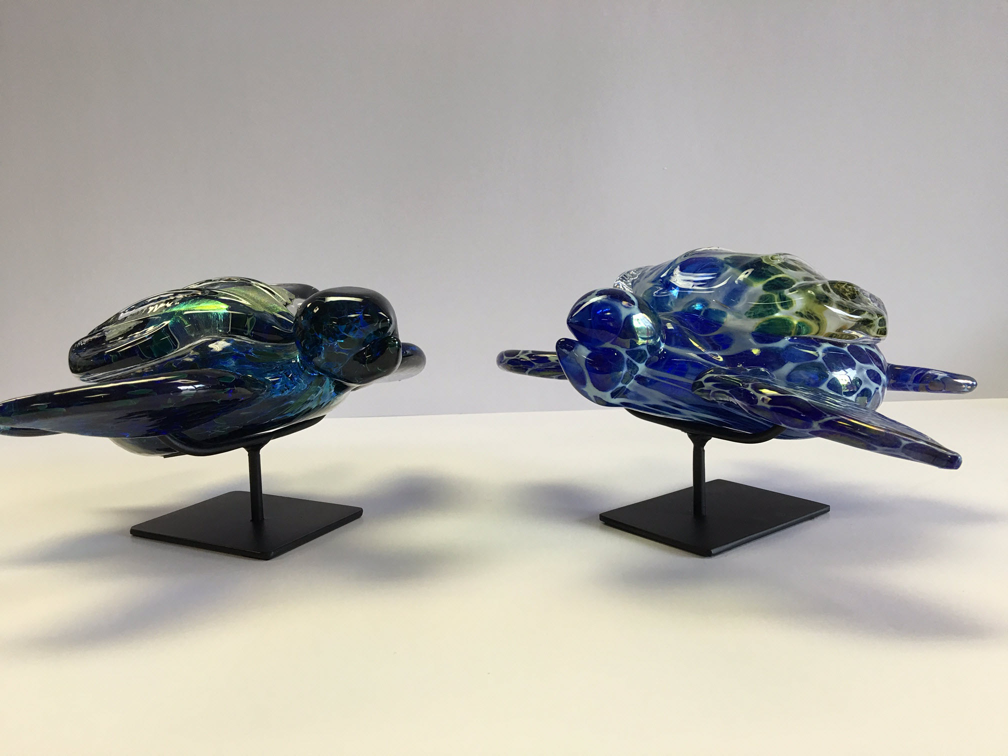 Taylor Backes Glass Art