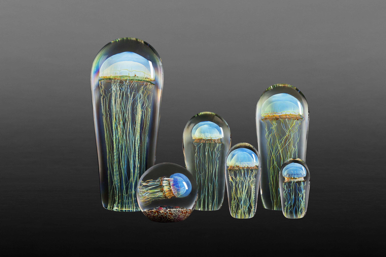 Glass By Richard Satava
